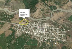 Foto de terreno habitacional en venta en  , el colomo, compostela, nayarit, 21097478 No. 01