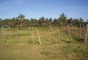 Foto de terreno habitacional en venta en  , el coloso infonavit, acapulco de juárez, guerrero, 7990732 No. 01
