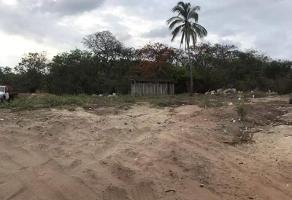 Foto de terreno habitacional en venta en el cortijo 5, altos del marqués, acapulco de juárez, guerrero, 0 No. 01