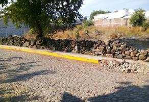 Foto de terreno habitacional en venta en  , el cualote, parácuaro, michoacán de ocampo, 19000128 No. 01