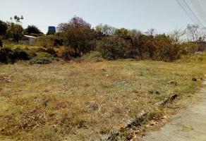Foto de terreno habitacional en venta en el empleado 1162, empleado postal, cuautla, morelos, 0 No. 01