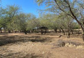 Foto de terreno habitacional en venta en el faro , el fraile, montemorelos, nuevo león, 18815582 No. 01
