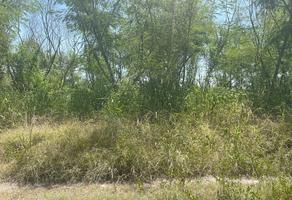 Foto de terreno habitacional en venta en  , el fraile, montemorelos, nuevo león, 0 No. 01
