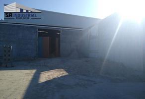 Foto de nave industrial en renta en  , el jaral, el carmen, nuevo león, 17095540 No. 01