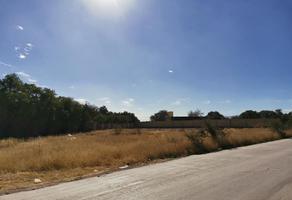 Foto de terreno habitacional en venta en  , el jaralito, mexquitic de carmona, san luis potosí, 0 No. 01