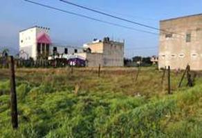 Foto de terreno habitacional en venta en el llano , santiago miltepec, toluca, méxico, 0 No. 01