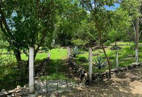 Foto de terreno habitacional en venta en  , el magueyito, tuxtla gutiérrez, chiapas, 0 No. 01
