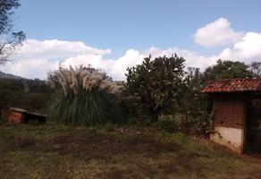 Foto de terreno habitacional en venta en el manzanillal , enrique ramírez, pátzcuaro, michoacán de ocampo, 0 No. 01