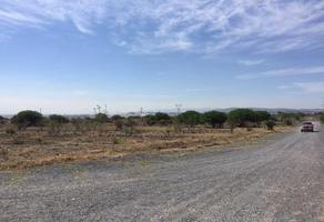 Foto de terreno comercial en renta en  , el marqués, querétaro, querétaro, 17774000 No. 01