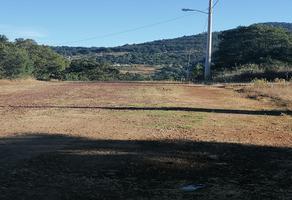 Foto de terreno habitacional en venta en el mirador , tlalpujahua de rayón, tlalpujahua, michoacán de ocampo, 18615814 No. 01