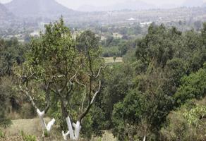 Foto de terreno habitacional en venta en el moral 1, el fuerte, totolapan, morelos, 0 No. 01