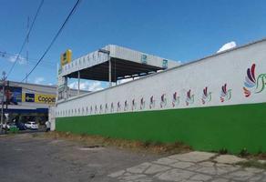 Foto de terreno habitacional en venta en el nogal , el nogal, metepec, méxico, 21593091 No. 01