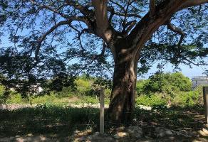 Foto de terreno habitacional en venta en  , el ojital, tampico, tamaulipas, 11728960 No. 01