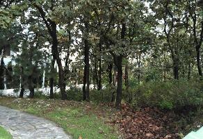 Foto de terreno habitacional en venta en  , el palomar, tlajomulco de zúñiga, jalisco, 6448932 No. 01