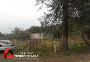 Foto de terreno habitacional en venta en  , el paraje texcal, jiutepec, morelos, 0 No. 01