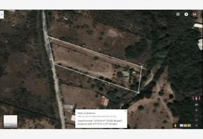 Foto de terreno habitacional en renta en  , el pastor, montemorelos, nuevo león, 0 No. 01
