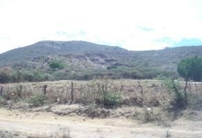 Foto de terreno habitacional en venta en el patomo , campo sur, tlajomulco de zúñiga, jalisco, 3973372 No. 01