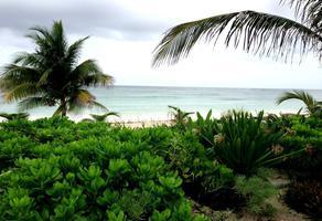 Foto de terreno habitacional en venta en el placer , mahahual, othón p. blanco, quintana roo, 0 No. 01