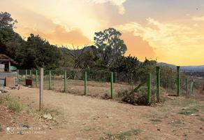 Foto de terreno habitacional en venta en el pocito , san andres huayapam, san andrés huayápam, oaxaca, 0 No. 01