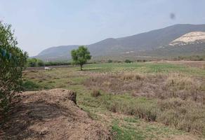 Foto de terreno habitacional en venta en el potrerito , santa maria del tule, santa maría del tule, oaxaca, 15930873 No. 01