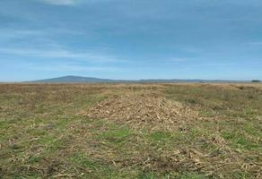 Foto de terreno habitacional en venta en el potrero del alambrado , cantabria, zacapu, michoacán de ocampo, 0 No. 01