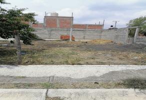 Foto de terreno habitacional en venta en el potrero , el potrero, morelia, michoacán de ocampo, 0 No. 01
