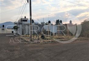 Foto de terreno habitacional en venta en  , el potrero, morelia, michoacán de ocampo, 0 No. 01