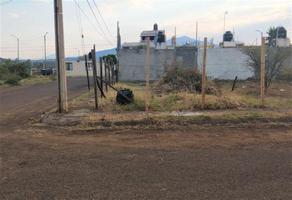 Foto de terreno comercial en venta en  , el potrero, morelia, michoacán de ocampo, 0 No. 01