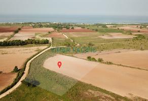 Foto de terreno habitacional en venta en el puertecito , santa maria colotepec, santa maría colotepec, oaxaca, 7608680 No. 01