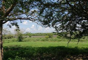 Foto de rancho en venta en el quebrache , san antonio tamijui, ozuluama de mascareñas, veracruz de ignacio de la llave, 9914880 No. 01