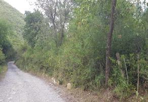 Foto de terreno habitacional en venta en  , el ranchito, santiago, nuevo león, 16965806 No. 01