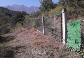 Foto de terreno habitacional en venta en  , el ranchito, santiago, nuevo león, 18457495 No. 01