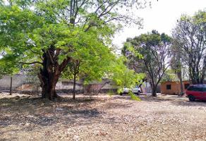 Foto de terreno habitacional en venta en  , el rodeo, miacatlán, morelos, 13159516 No. 01