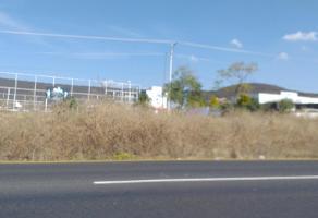 Foto de terreno habitacional en venta en el salitre , el salitre, colón, querétaro, 9771708 No. 01