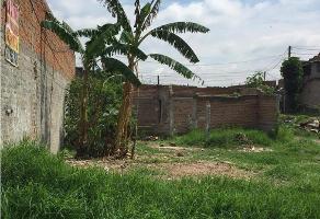 Foto de terreno habitacional en venta en  , el salto centro, el salto, jalisco, 0 No. 01