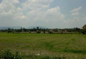 Foto de terreno habitacional en venta en  , el salto centro, el salto, jalisco, 6888053 No. 02
