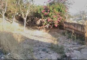 Foto de terreno habitacional en venta en el salto , lomas de tabachines, zapopan, jalisco, 11211540 No. 01