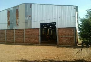 Foto de nave industrial en renta en el saucillo , zapotlanejo, zapotlanejo, jalisco, 3083956 No. 01
