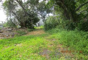 Foto de terreno habitacional en renta en  , el tecolote, colima, colima, 6398202 No. 01