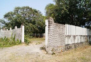 Foto de terreno habitacional en venta en  , el tejar, medellín, veracruz de ignacio de la llave, 11412421 No. 01