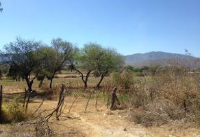 Foto de terreno habitacional en venta en  , santa rosa, ixtlahuacán de los membrillos, jalisco, 5877276 No. 01
