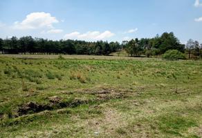 Foto de terreno habitacional en venta en el tepetetal 26, san francisco tlalcilalcalpan, almoloya de juárez, méxico, 0 No. 01