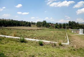 Foto de terreno habitacional en venta en el tepetetal 27, san francisco tlalcilalcalpan, almoloya de juárez, méxico, 0 No. 01