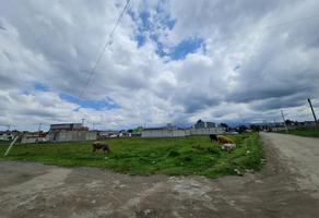 Foto de terreno habitacional en venta en  , el testerazo, zinacantepec, méxico, 0 No. 01