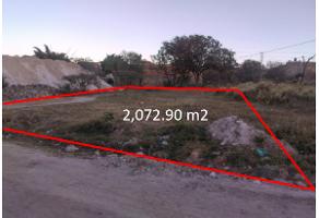 Foto de terreno habitacional en venta en el tigre , nuevo méxico, zapopan, jalisco, 6746192 No. 01