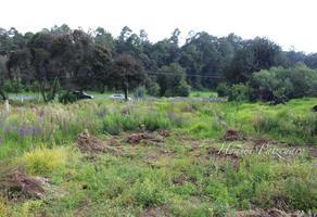 Foto de terreno habitacional en venta en  , el triángulo, pátzcuaro, michoacán de ocampo, 13828860 No. 01