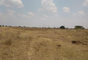 Foto de terreno habitacional en venta en el trigo , norias del ojocaliente, aguascalientes, aguascalientes, 13830400 No. 01