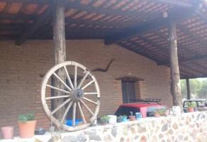 Foto de casa en venta en el uvalano , zapotlan del rey, zapotlán del rey, jalisco, 0 No. 01