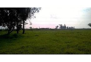 Foto de terreno habitacional en venta en  , el zapote del valle, tlajomulco de zúñiga, jalisco, 13776495 No. 01