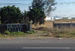 Foto de terreno habitacional en venta en  , el zapote del valle, tlajomulco de z??iga, jalisco, 4526478 No. 02